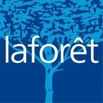 LAFORET Immobilier - LEONARD IMMO CONSEIL